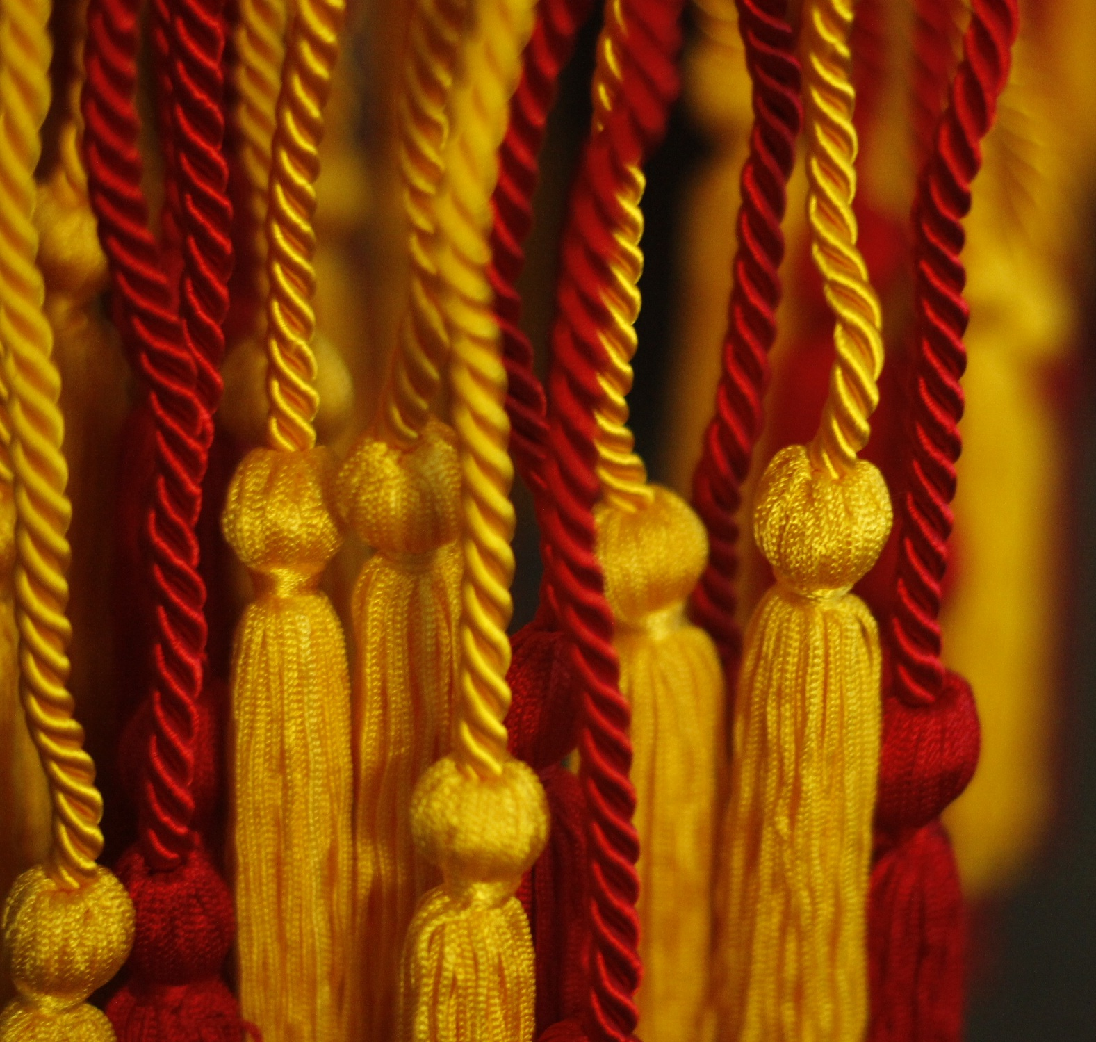 Close up of Cords - Cropped.jpg